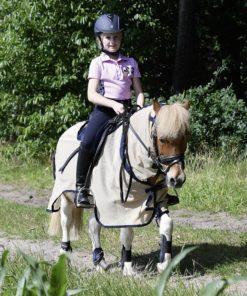 Pony mit Fliegendecke