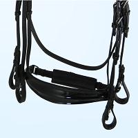 Dressur Kandaren für Pferde