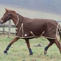 Pferdedecken für Pferde