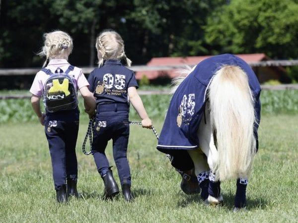 Busse Spaß mit Pony