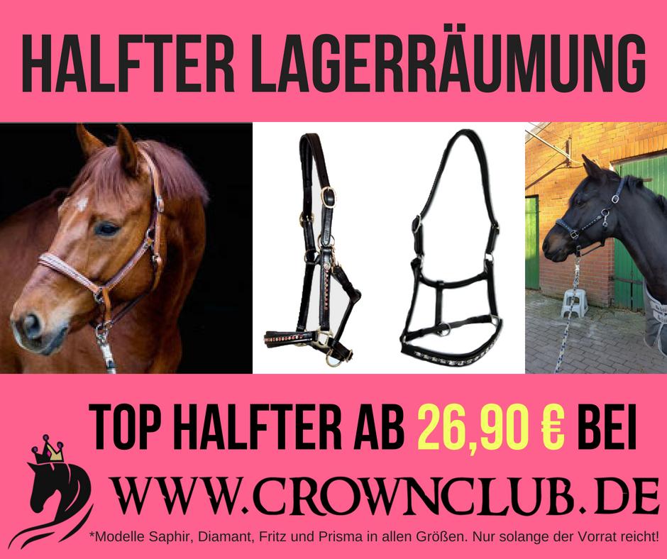 Halfter Sale