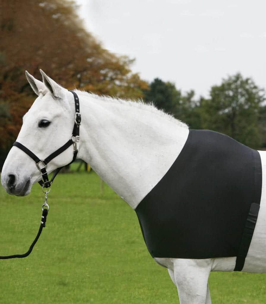 Brustschutz Comfort Vest