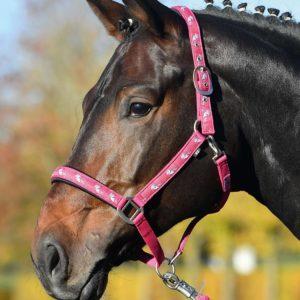 Einhorn Halfter pink